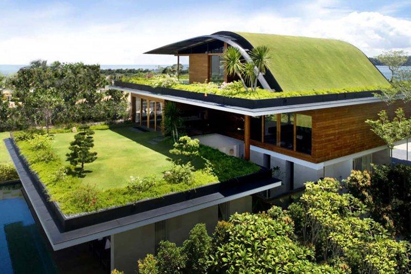 Diseño-Techos Verdes-4.jpg