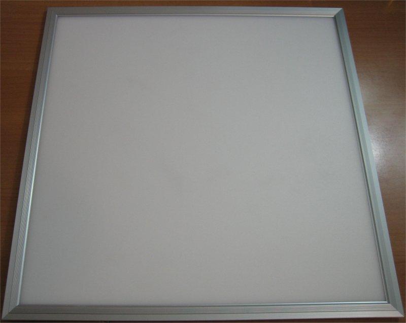 panel100-portada.jpg