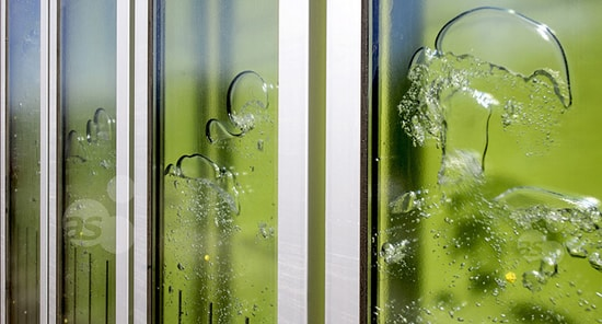 bioreactor biq burbujas