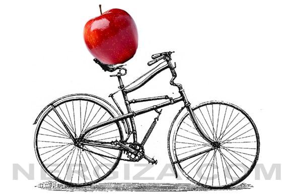 consumo alimento bici