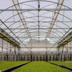 Climatización pasiva: El efecto Invernadero