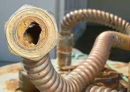 tubo calcificado